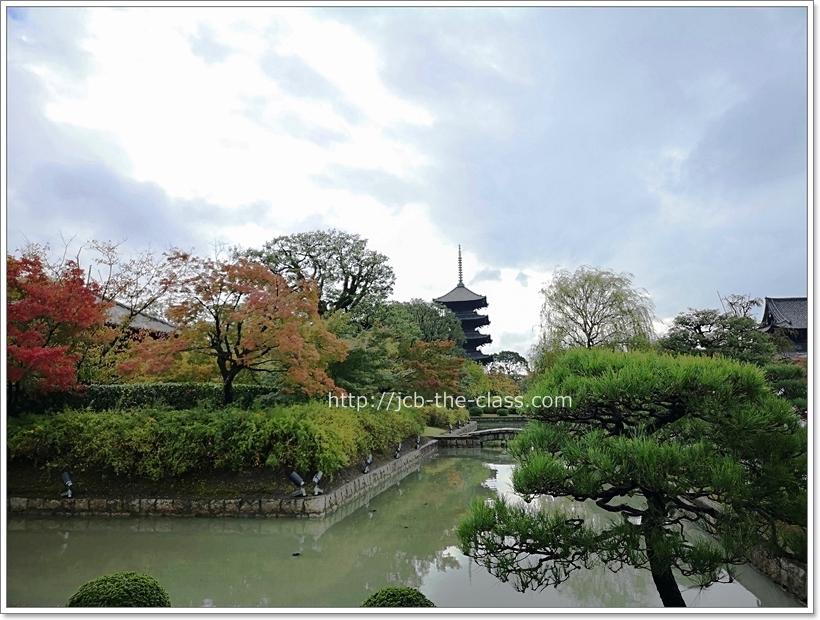京都 東寺 紅葉