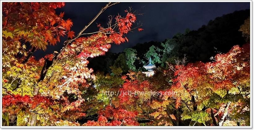 永観寺(禅林寺) 紅葉ライトアップ